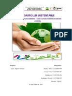 Desarrollo Sustentable (Impacto-gestion)