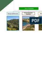 Las diferentes zonas climáticas TEMPLADAS.docx