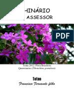 Teteo - O Assessor