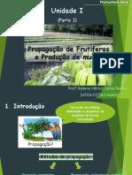 Propagação de Fruteiras (1).pdf