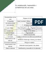 Características de las Aves.pdf