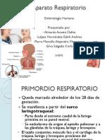 aparatorespiratorio-111025000854-phpapp02