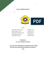 Case Kala II memanjang update.docx