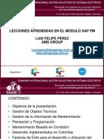 CM3.10_Lecciones Aprendidas SAP PM_Luis Pérez