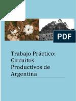 Trabajo Practico Circuitos Productivos de Argentina  Nayla Gonzalez 5°B