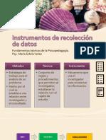 Instrumentos de Recolección de Datos (2)
