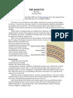 Rosettes.pdf