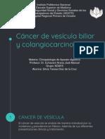 Colangiocarcinoma [Autoguardado]