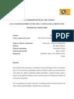 Practica Informe 3 Laminacion