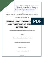 Desarrollo Del Lenguaje en Niños Con Trastorno Del Espectro Autista (Tea)
