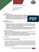 Formato de Informe Sotwares