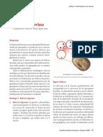 04BabesiosisBovina.pdf