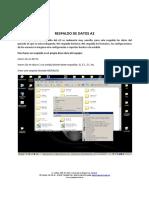 RESPALDO-DE-DATOS-A2.pdf