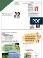 Diptico Alimentaria Tbc y Pulmones