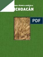Cultivos en Michoacán INIFAP