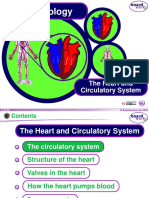 KS4 the Heart and Circulatory System