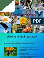 2.4 Biodiversidad