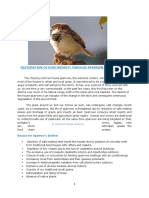 Others- Sparrow Conservation
