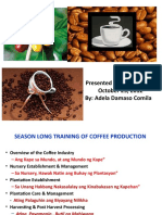 Coffee Training