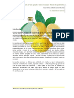 02Feb Limon