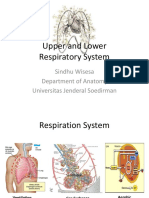 K1 - Upper and Lower Resp System - Sindhu Wisesa - ReK1