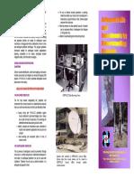 safeguarding life.pdf