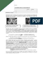 8c2ba-oraciones-pasivas-lenguaje.pdf