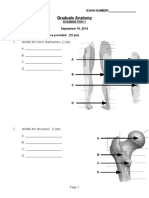 Lower Limb Thorax Written Exam 2014