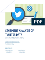 Sentiment Analysis Final Documentation Report