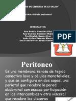 Dialisis Peritoneal Original1
