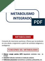 Tema 1. Introduccion Metab.pptx