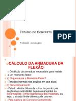aula 3-Estádios do CA.pdf