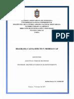 Diagrama Causa Efecto y Modelo CAF