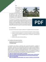 estructura del estado monografia.docx