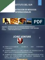 2.- Joint Venture