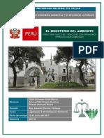 Legislacion - Trabajo Final Minam Al 12.06.17