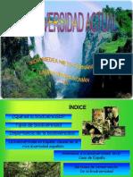 Biodiversidad Laura y Nidia 1214992764765001 9
