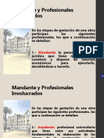 02_mandante_profesionales.pdf