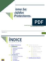 Tema 5a Protectores