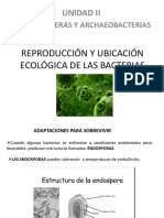 Reproducción y Ubicación Ecológica de Las Bacterias