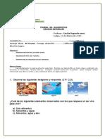 PRUEBA DE DIAGNOSTICO 2° C. NATURALES  23 de marzo