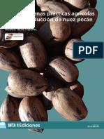 Inta - Guia de Buenas Practicas Agricolas Para La Produccion de Nuez Pecan