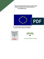 InformeCSIC Situacion Ambiental Huelva