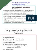 3.- Funciones Efectoras de Las Ig