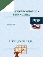 Evaluacion Financiera Flujo de Caja