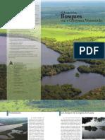 Folleto Bosques Guayana Venezolana