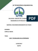 USOS Y TECNOLOGIAS DEL NITROGENO.docx