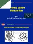 10.a)OBSTETRI-ANEMIA DALAM KEHAMILAN dr. sigit FIX ONA.ppt