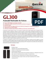 GL300 ES 20150106