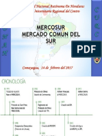 Expo MERCOSUR.pptx